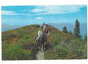Horseback Riders in The Great Smoky Mountains National Park Tennessee