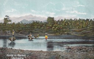 JAMAICA, 1900-1910s; Going to market