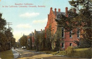 California University Grounds, UC Berkeley c1910s Vintage Postcard