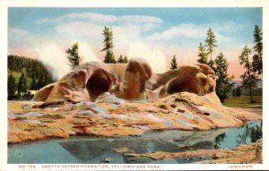 Yellowstone National Park Grotto Geyser Formation Haynes Photo