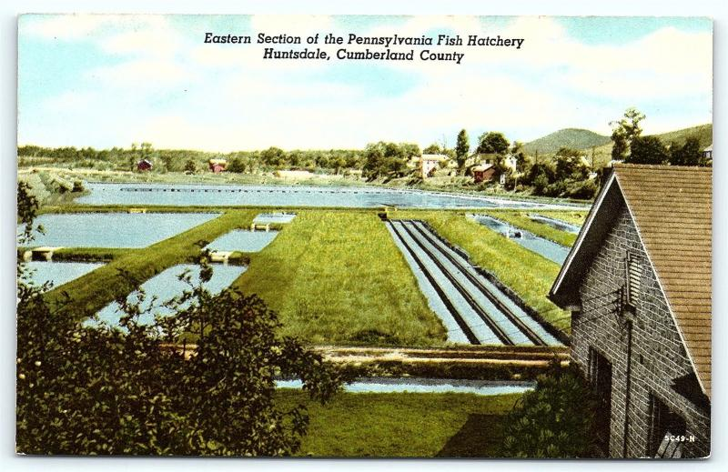 Postcard PA Huntsdale Eastern Section Pennsylvania Fish Hatchery  R40