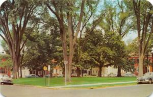 Dover Delaware~Dover Green Shaded by Trees~1950s Street Scene~NICE Classic Cars
