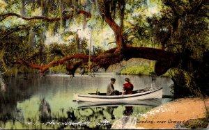 Florida Ormond Canoeing On Tomoka River