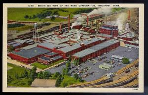 Mead Corporation birds eye Kingsport TN unused 1930s