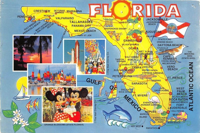 Disney Florida Map.Bg21087 The Walt Disney Florida Usa Map Cartes Geographiques