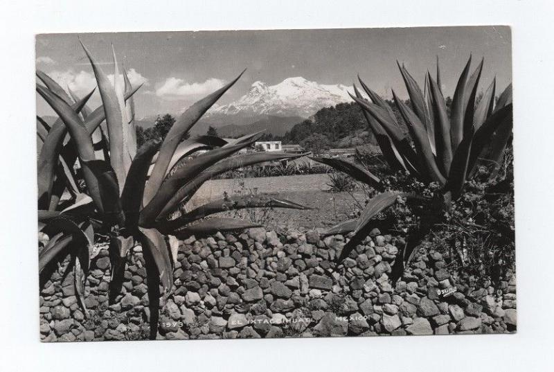 MEXICO landscape Real photo Postcard 1950years  MEXICO EL IXTACCIHUATL