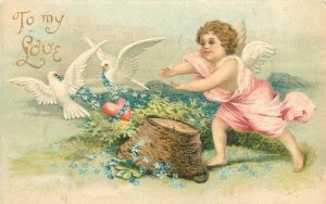 Clapsaddle Valentine~Pink Gossamer Cupid Chases White Doves With Heart~Embossed