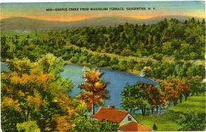 Esopus Creek from Washburn Terrace - Saugerties, New York -  pm 1950 - Linen