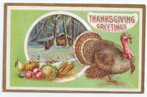 Thanksgiving Greetings Turkey Cottage fruits Embossed 1912 Solomon Bros Postcard
