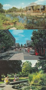 Swindon Shopping Precinct Square Tower Gardens 3x 1970s Postcard s