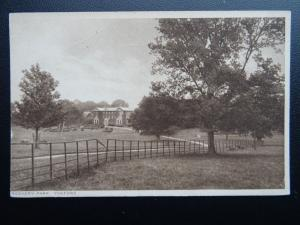 Suffolk YOXFORD Rookery Park - Old Postcard by A.S. Green of Post Office Yoxford