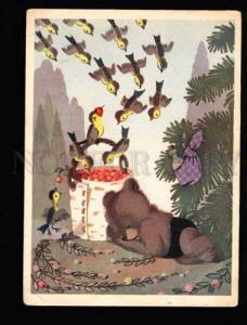 040012 Sleeping Dressed TEDDY BEAR & Hungry Birds old PC