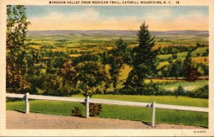 New York Catskills Windham Valley From Mohican Trail 1941 Curteich