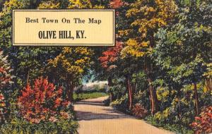 Olive Hill Kentucky Scenic Roadway Greeting Antique Postcard K93198