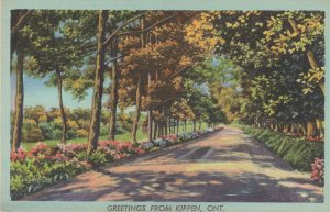Greetings From Kippen Ontario Old Rare Postcard