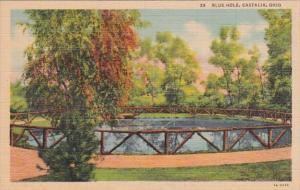 Ohio Castalia Blue Hole Curteich