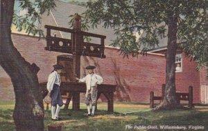 The Public Goal Williamsburg Virginia