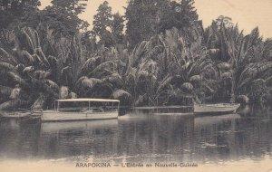 ARAPOKINA - L'entree en Nouvelle-Guinee , 00-10s