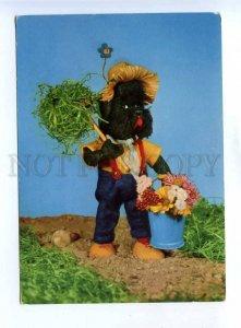 200435 RUSSIA dressed poodle dog old postcard