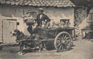 Bruxelles, Belgium , 1910 ; Laitiere flamande, Dog Milk Cart