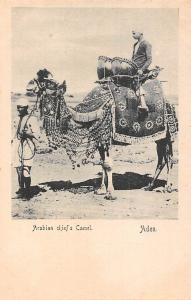Yemen Aden, Arabian chief's Camel, Turkish Shop
