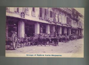Mint Singapore Real Picture Postcard Ox pulling Carts