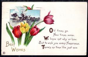 Best Wishes Tulips Windmills BIN