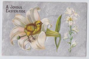 Vintage Easter Postcard Embossed Chick in Lily Silver Moire