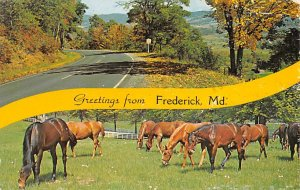 Greetings from Frederick Greetings from, Maryland MD