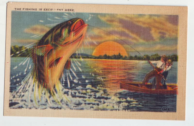 P1165 linen unused postcard large exaggerated fishing is excellent here