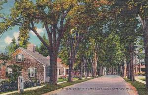 Massachusetts Cape Cod Typical Street In A Cape Cod Village