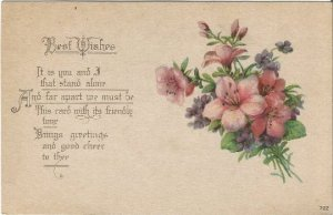 Best Wishes Beautiful Bouquet of Violets and Primrose Vintage Postcard Greetings