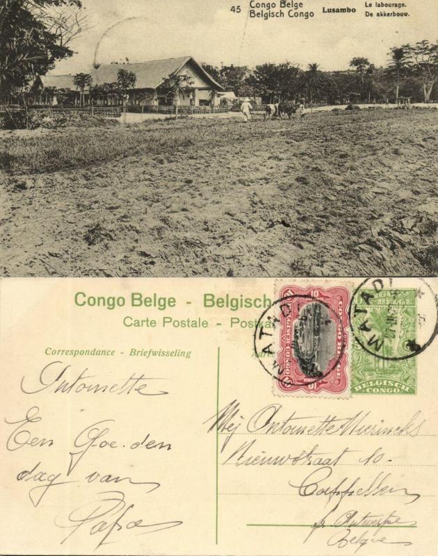 belgian congo, LUSAMBO, Plowing (1922) Postcard (45)