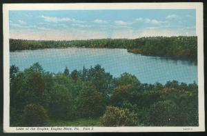 PA Eagles Mere Lake of the Eagles Vintage Curteich  C Postcard ca 1920's