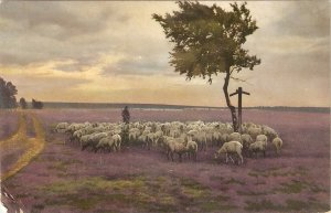 Scene. Shepherd with his flock Nice old vintage French postcard