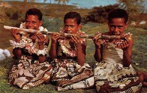 Sugar Cane Meal Fiji Unused