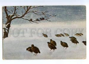 167432 Winter HUNT Partridge by URLICH vintage Color PC