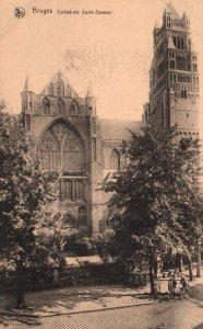 Cathedrale Saint-Sauveur,Bruges,Belgium BIN