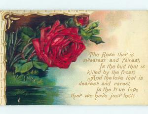Divided-Back POEM ABOUT ROSES & BEAUTIFUL RED ROSE FLOWER o9186