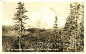 Real photo -Buzzard Point Mt Hood OR 1931