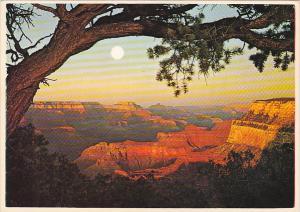 Evening Sun Grand Canyon National Park Arizona