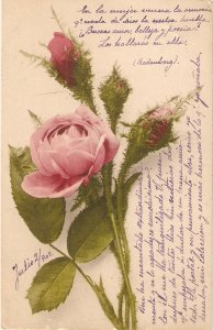 ·Beautiful roses Nice old vintage antique German postcard