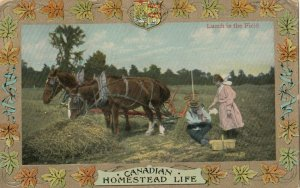 Homestead Life , Canada , 1900-10s ; Lunch in the field