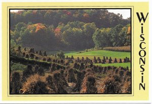 US Unused.  Wisconsin Farm Field - Beautiful.