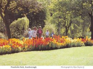 Scarborough Postcard, Peasholm Park, North Yorkshire by Max Payne O56