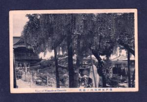 JAPAN View Wistaria at KAMEDO POSTCARD Carte Postale Japanese