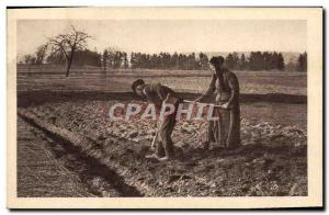Old Postcard Folklore Culture in the fields