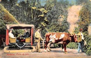 Portugal Old Vintage Antique Post Card Carro de Bois Madeira Writing on back