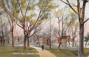 Dubuque Iowa~Boy on Path in Jackson Park~Neighborhood Homes~1912 Postcard