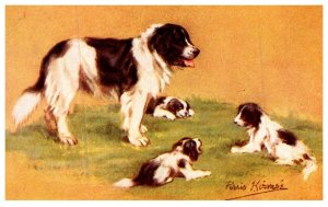 Dog , Mother with Puppies